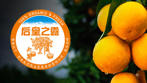 后皇之露橙品牌形象设计